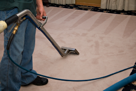 How Often Should You Have Wall To Wall Carpet Cleaning Performed Hadeed Carpet And Rug